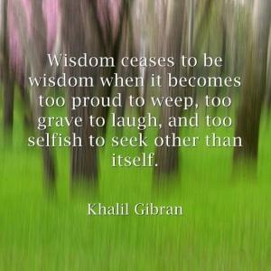 wisdomceases2bwisdom